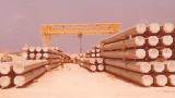 כלונסאות לנמל אשדוד-1970